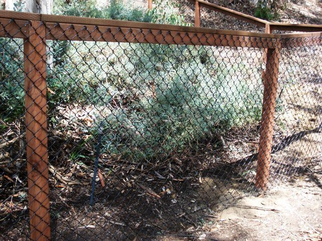 Cheap Fence Ideas | karen gordy 25 weeks ago cheap fence ideas coated chain link w wood ...