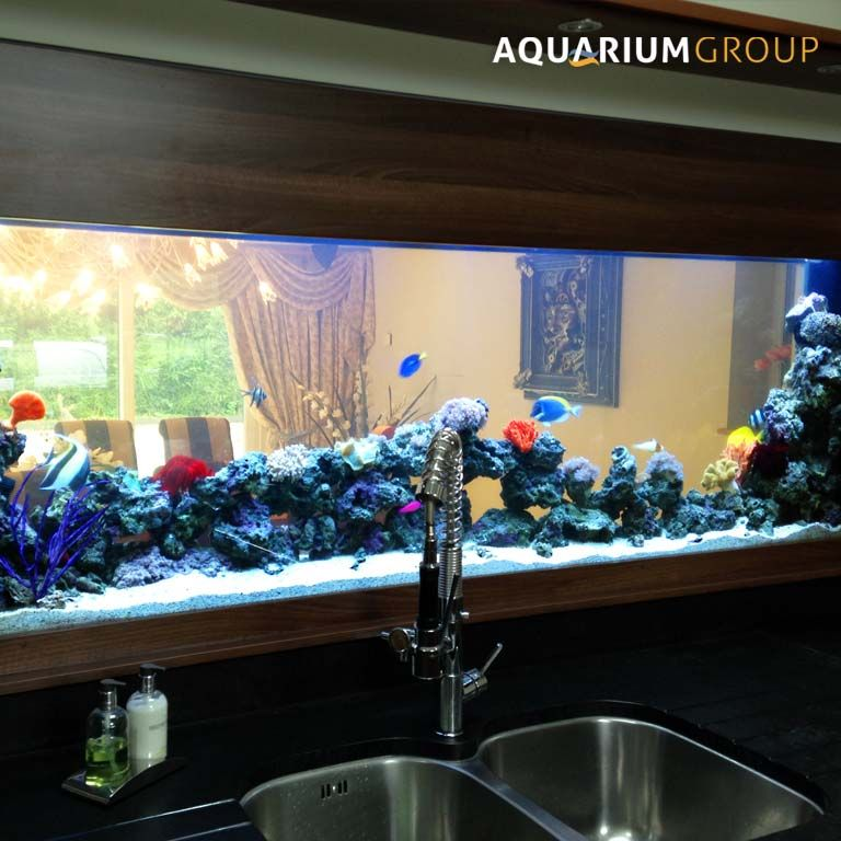 Marine through wall aquarium kitchen splashback house for Smart fish tank