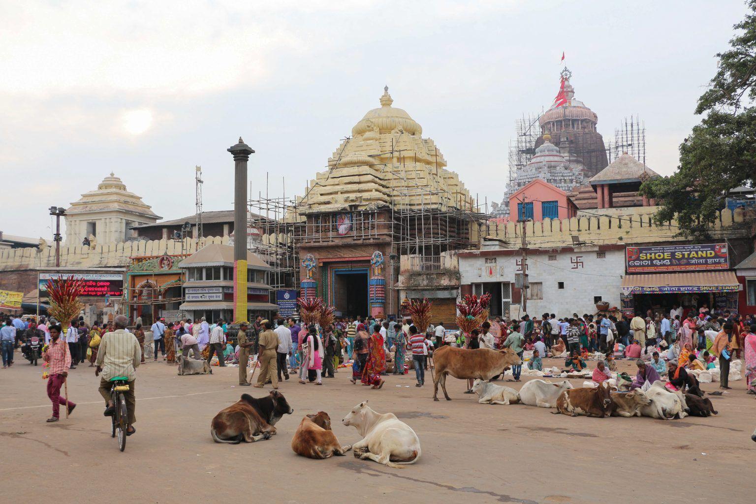 13 Best Weekend Getaways Within 260 Kms of Bhubaneswar