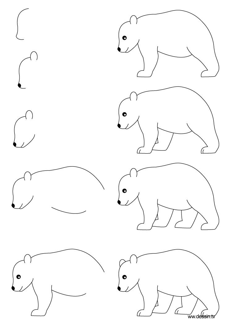 How To Draw Step By Step Learn How To Draw A Bear With Simple Step By Step Instructions Drawings Bear Drawing Animal Drawings