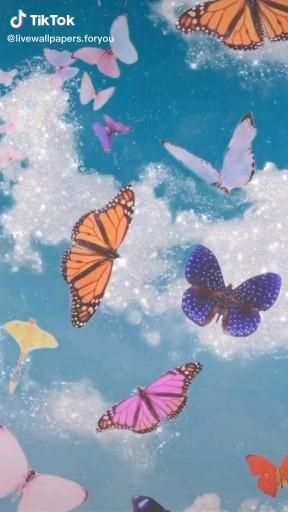 Follow Drvzyleee For More Dylan O Brien Video Butterfly Wall