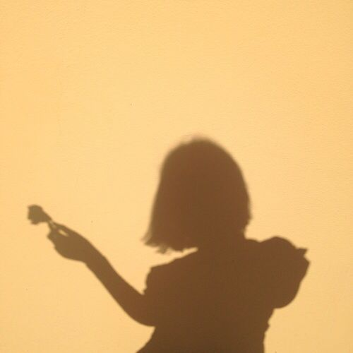 da8d2410d9d a silhouette of a person holding a flower against a yellow background