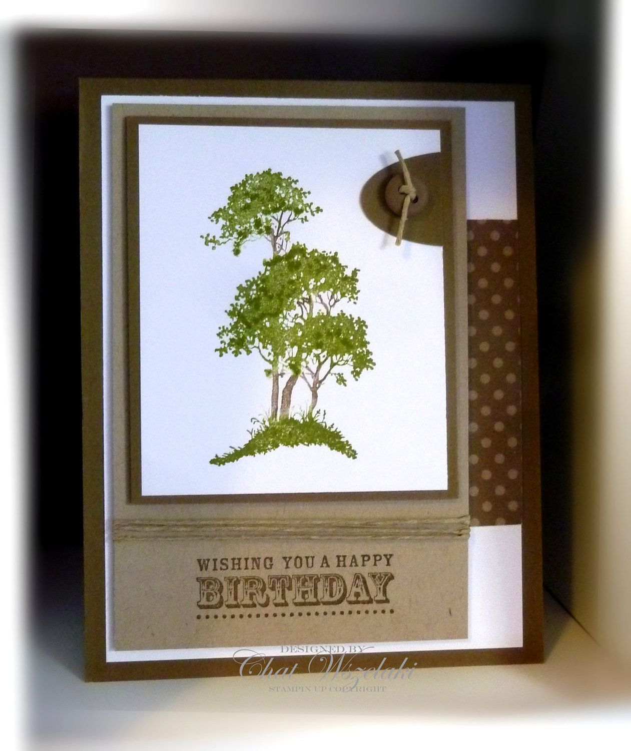 Masculine Birthday Cards Stampin Up