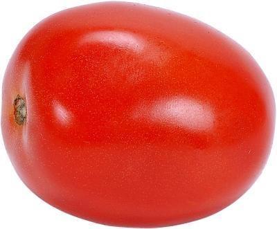 Roma Tomato Plants Determinate or Indeterminate? Roma Tomatoes - Determinate - How to growRoma Tomatoes - Determinate - How to grow