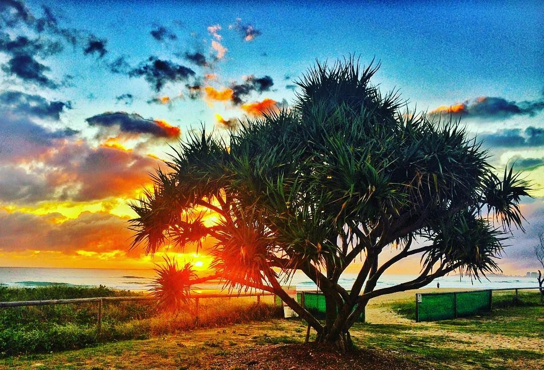 #morning #currumbin #currumbinbeach #sunrise #autumn #goldcoast #southerngoldcoast #pt #exercise I wouldn't call it doing a full intense PT session but more I got out of bed early and moved.... #slowandsteady #6months by ingastram http://ift.tt/1X9mXhV