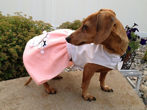 Oval Link Dachshund Rescue Weiner Dog Poodle Skirt