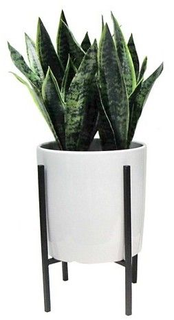 Threshold Artificial Plant In Stand Large グリーン 植物