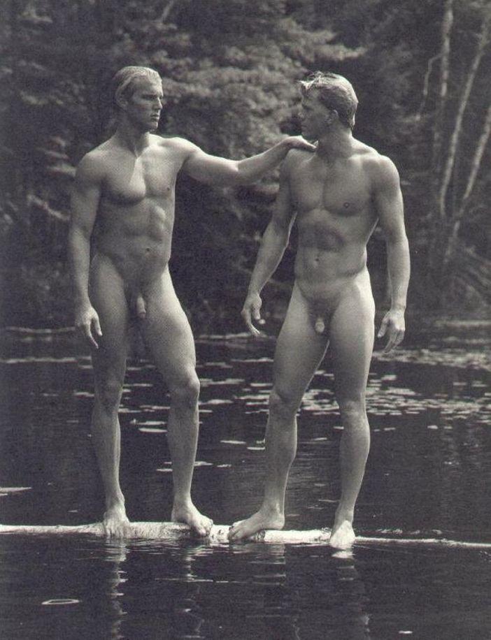 gay bruce Bears