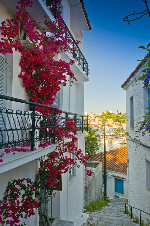 Fyeahgreekislands Skiathos Greece By Andy Collins88