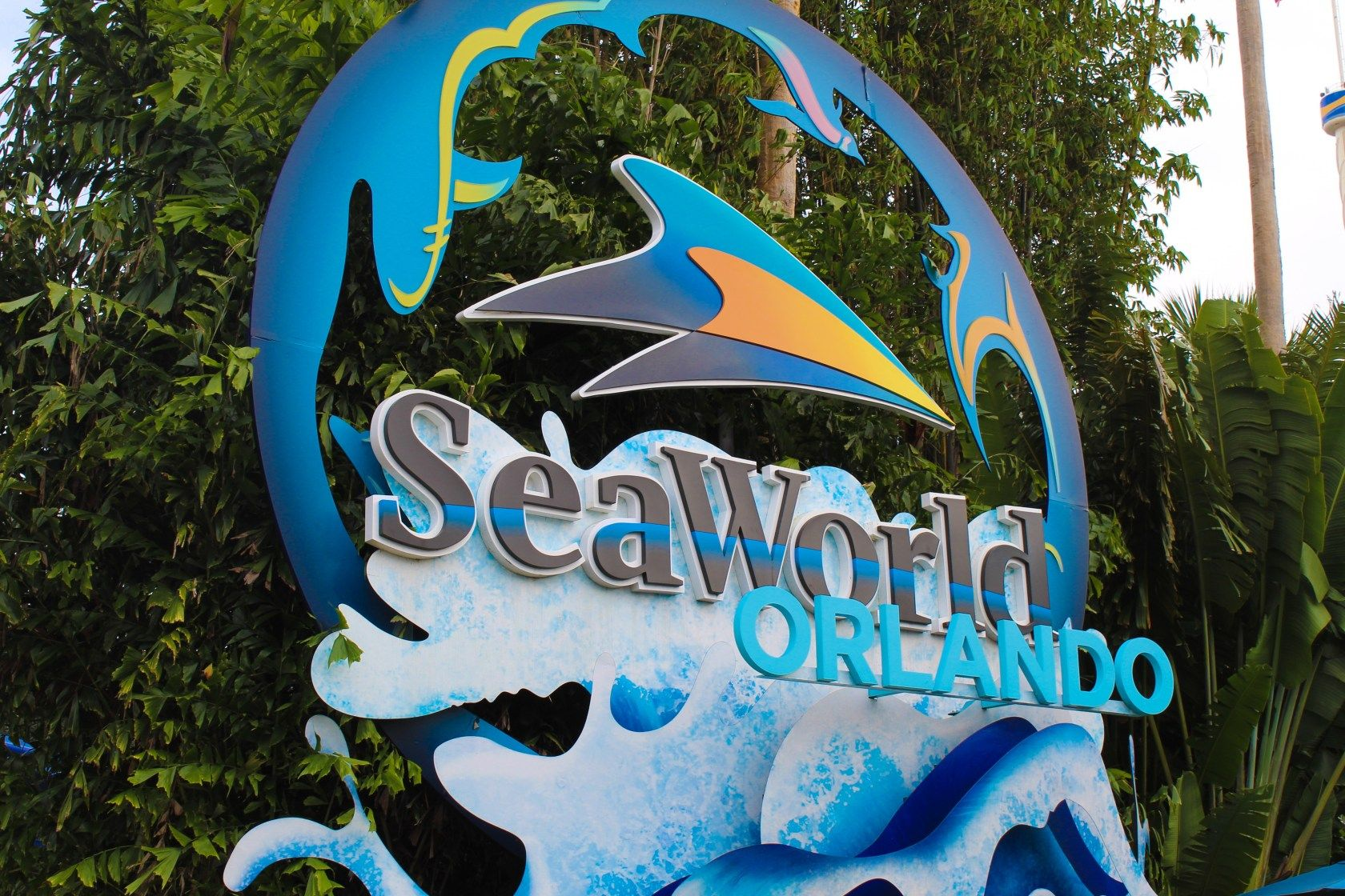 Seaworld Military Discount Why The Waves Of Honor Program Should