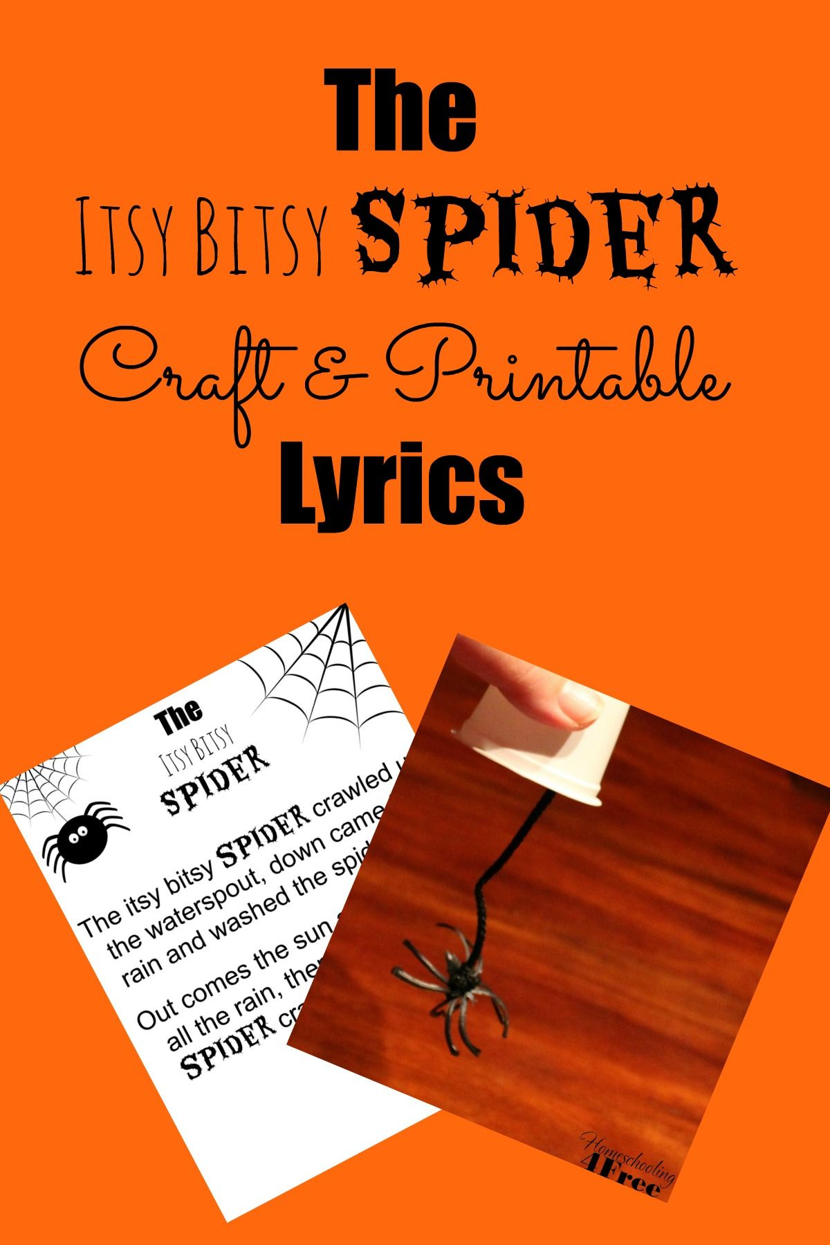 Let S Crawl Around With The Itsy Bitsy Spider Here Is A