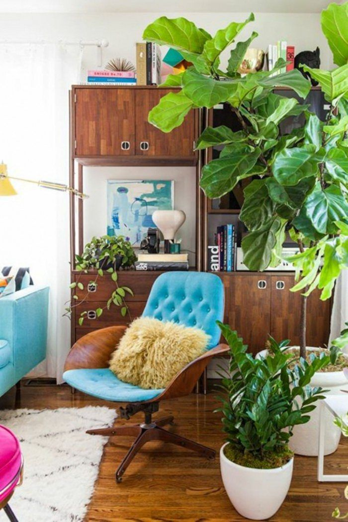 House With Mid Century Furniture And Indoor Plants Mid century