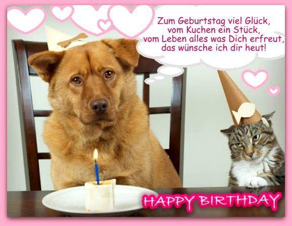 Ich Wunsche Dir Alles Gute Zum Schlupftag Hund Geburtstag Geburtstagstiere Geburtstags Wunsche Lustig