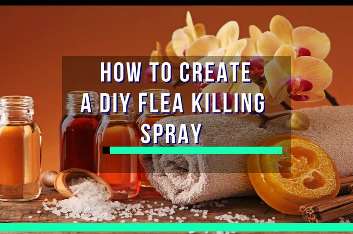 how to get rid of fleas and chiggers in yard