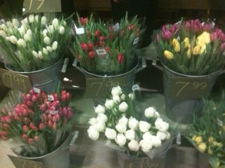 Spring Tulips available at our floral department.
