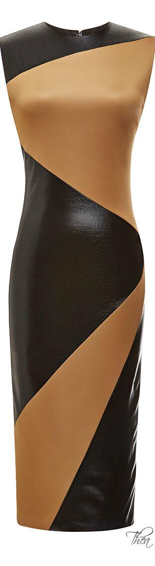Fausto Puglisi ● Resort 2015, Black And Brown Inlay Dress
