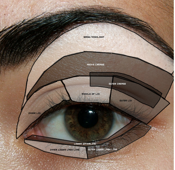 How to use 8 different eyeshadow color