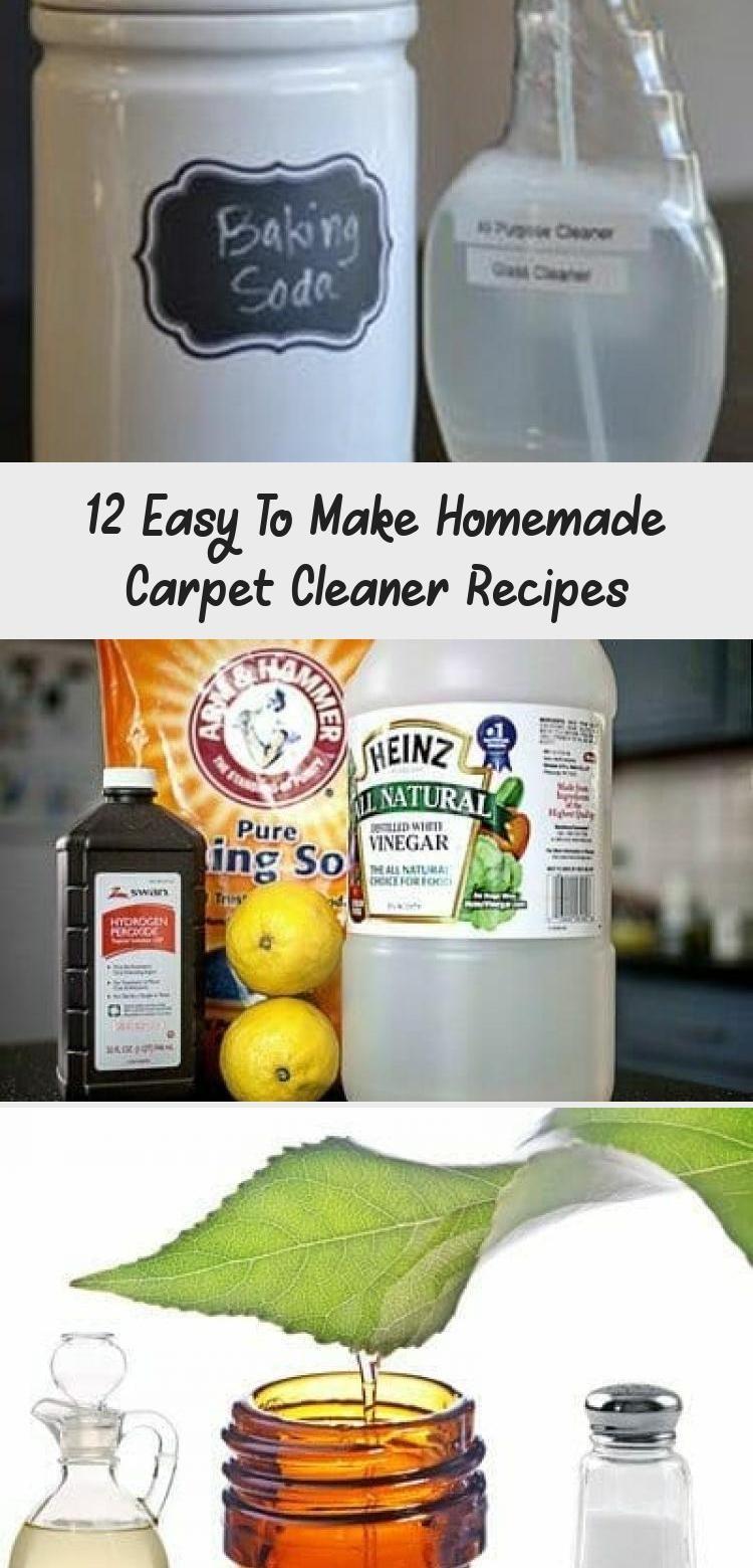12 easy to make homemade carpet cleaner recipes