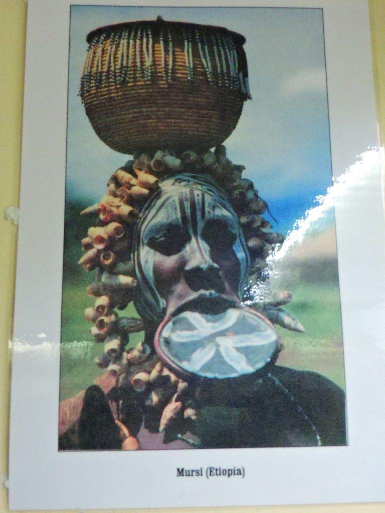 Museo Mundo Negro - Mujer mursi con los característicos discos labiales. Los…