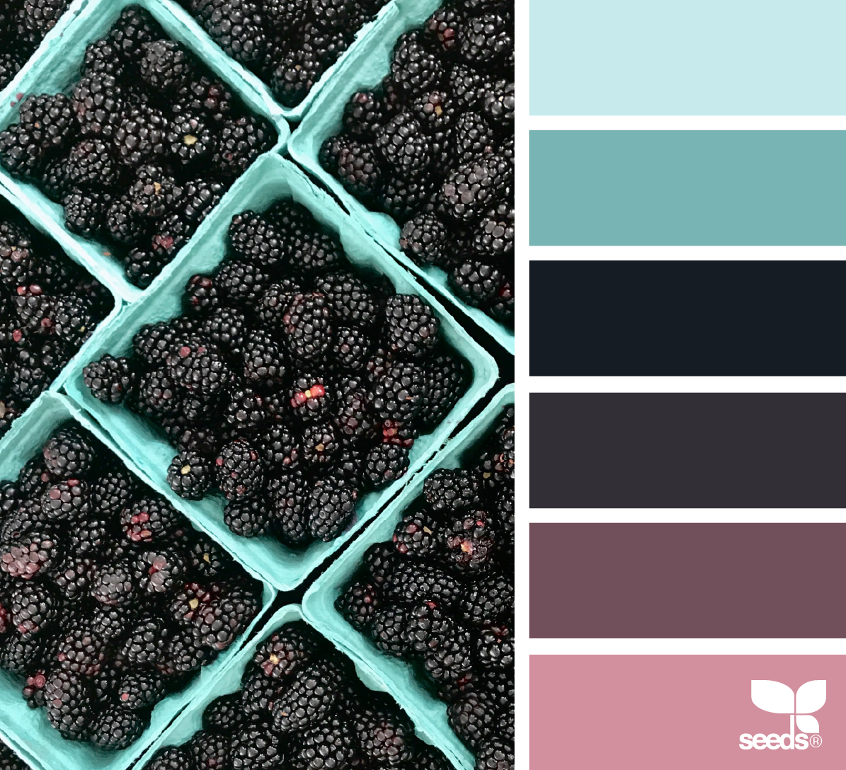 { fresh hues } - https://www.design-seeds.com/slow-lifestyle/market-hues/fresh-hues-18
