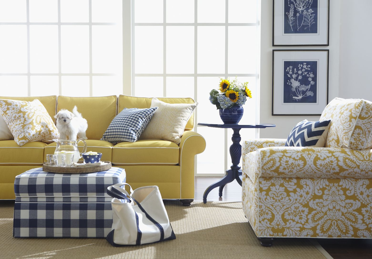 Even Our Furry Friends Love The Cheerful Fabric On Our