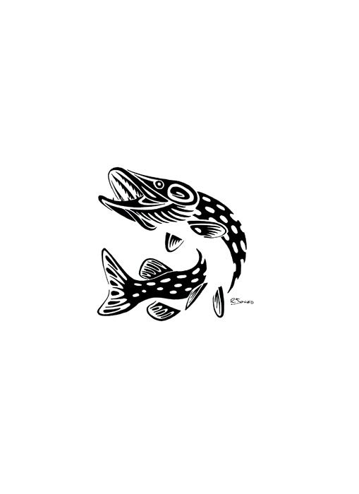 celtic salmon tattoo google search tattoos pinterest salmon tattoo tattoo and tattoo celtic. Black Bedroom Furniture Sets. Home Design Ideas