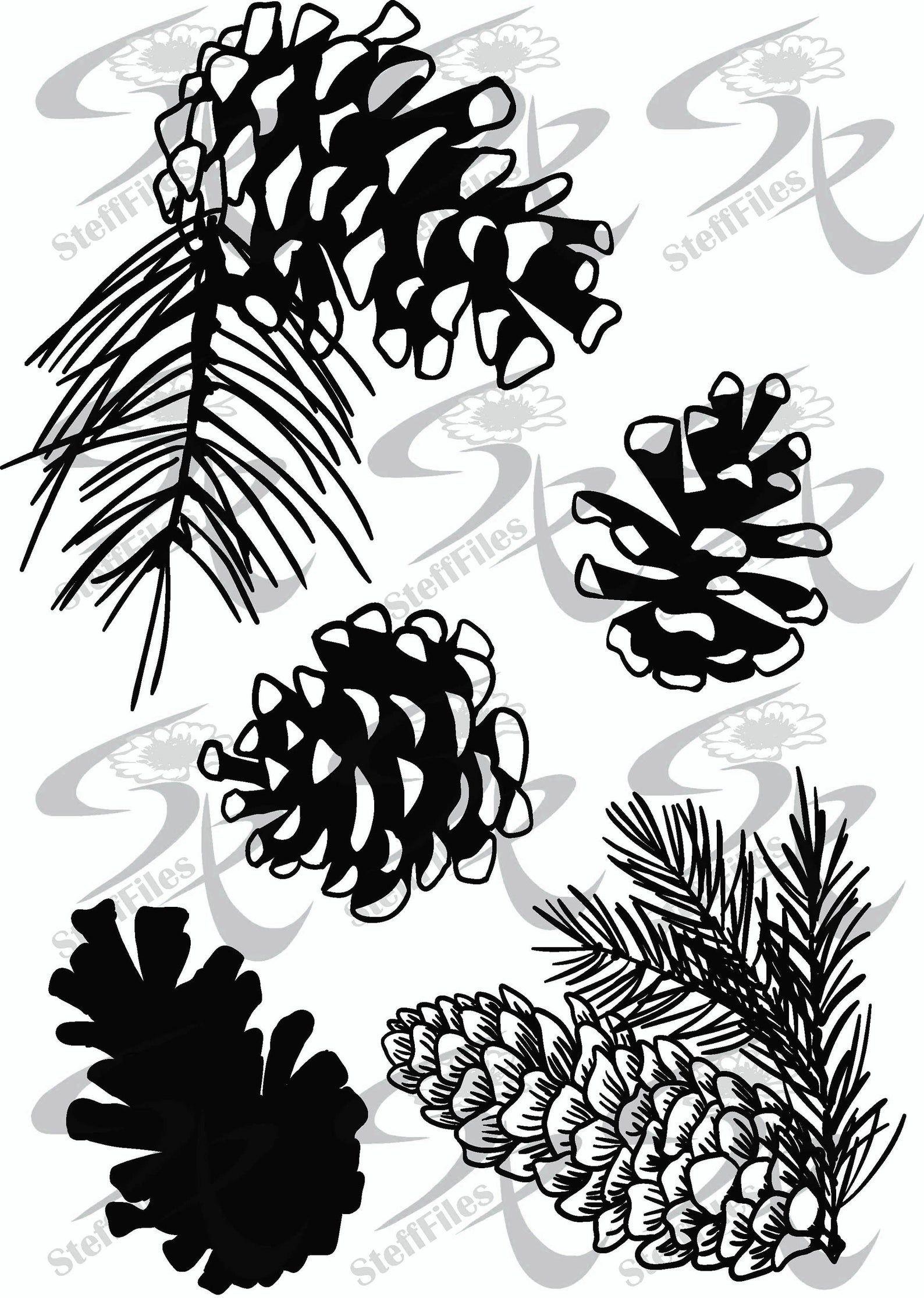 Vector Pine Cones Pine Cone Etsy Pine Cone Drawing Pine Cones Graphic