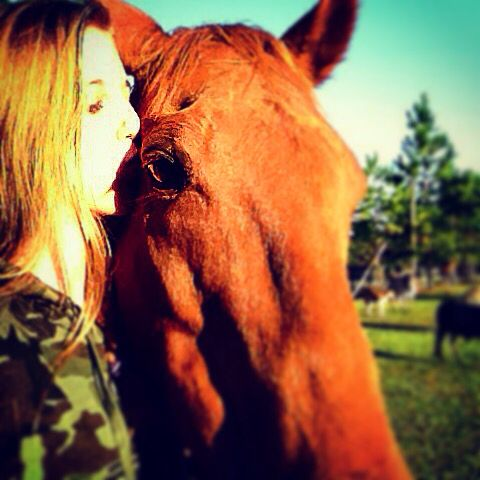 love between a horse and her owner Her name isAwesome blossom and she's a throughbred she's so cute