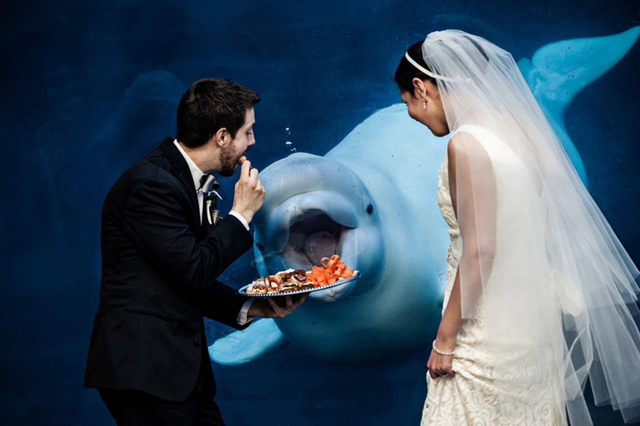 Смешная фото со свадьбы