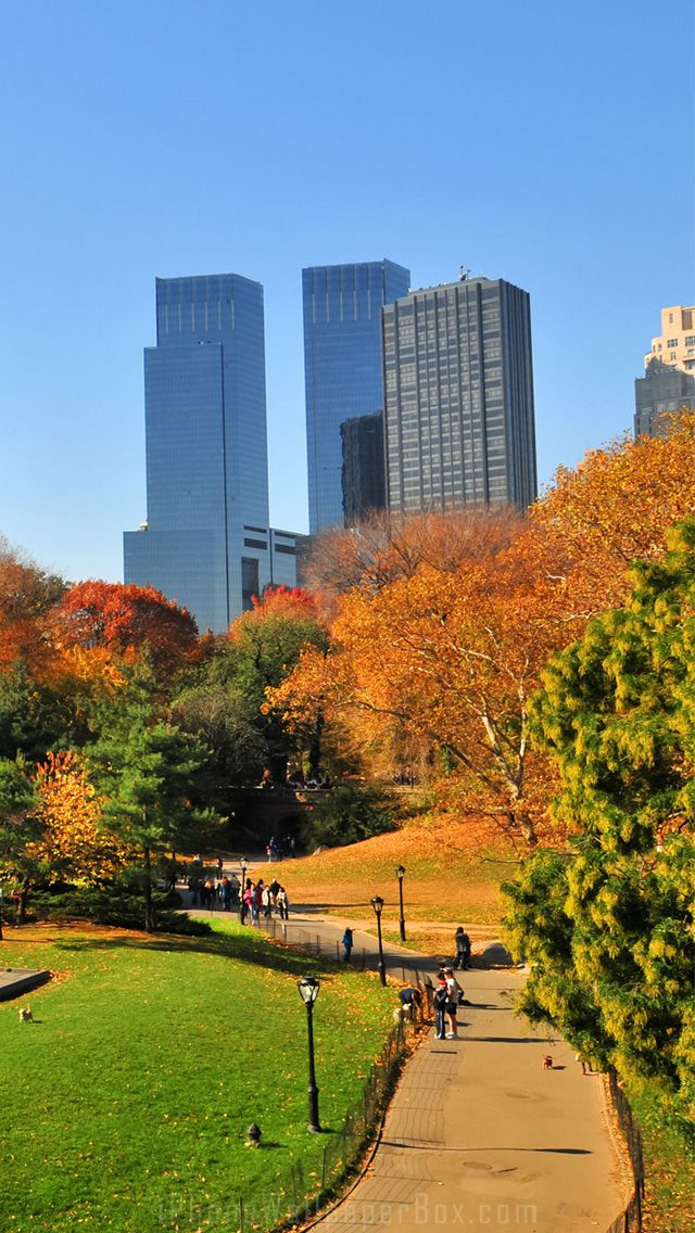 Nyc central park autumn wallpaper for iphone 5 6 plus for Central park wallpaper