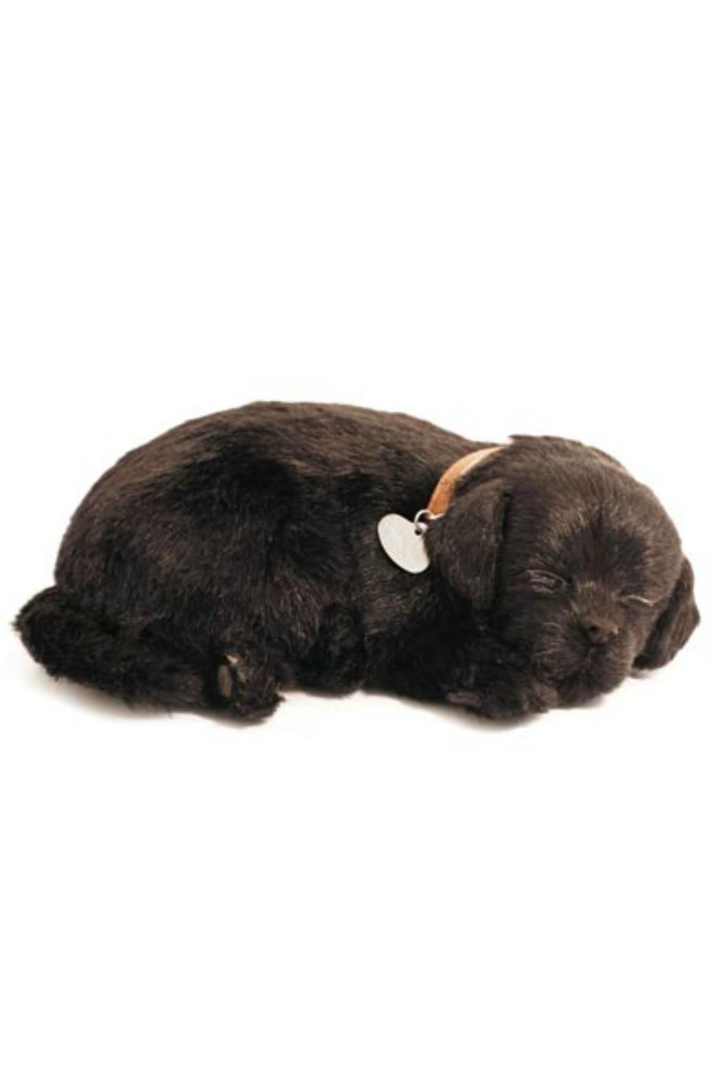 Sleeping Labrador Toy Black Lab Puppies Black Lab Lab Puppies