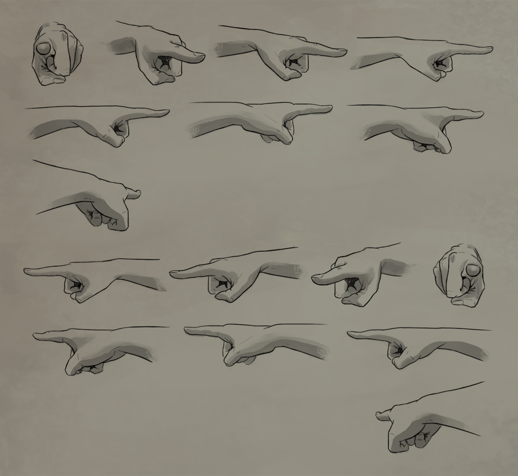 Pointing Rotation Reference Sheet By Atropicusviantart On Deviantart