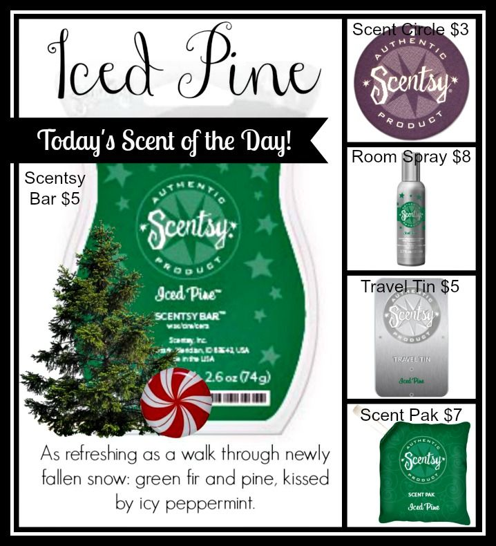 Iced Pine items can be purchased on my website: www.ericagonzalez.scentsy.us  Follow me on Facebook: https://www.facebook.com/SavvySweetScentsbyErica