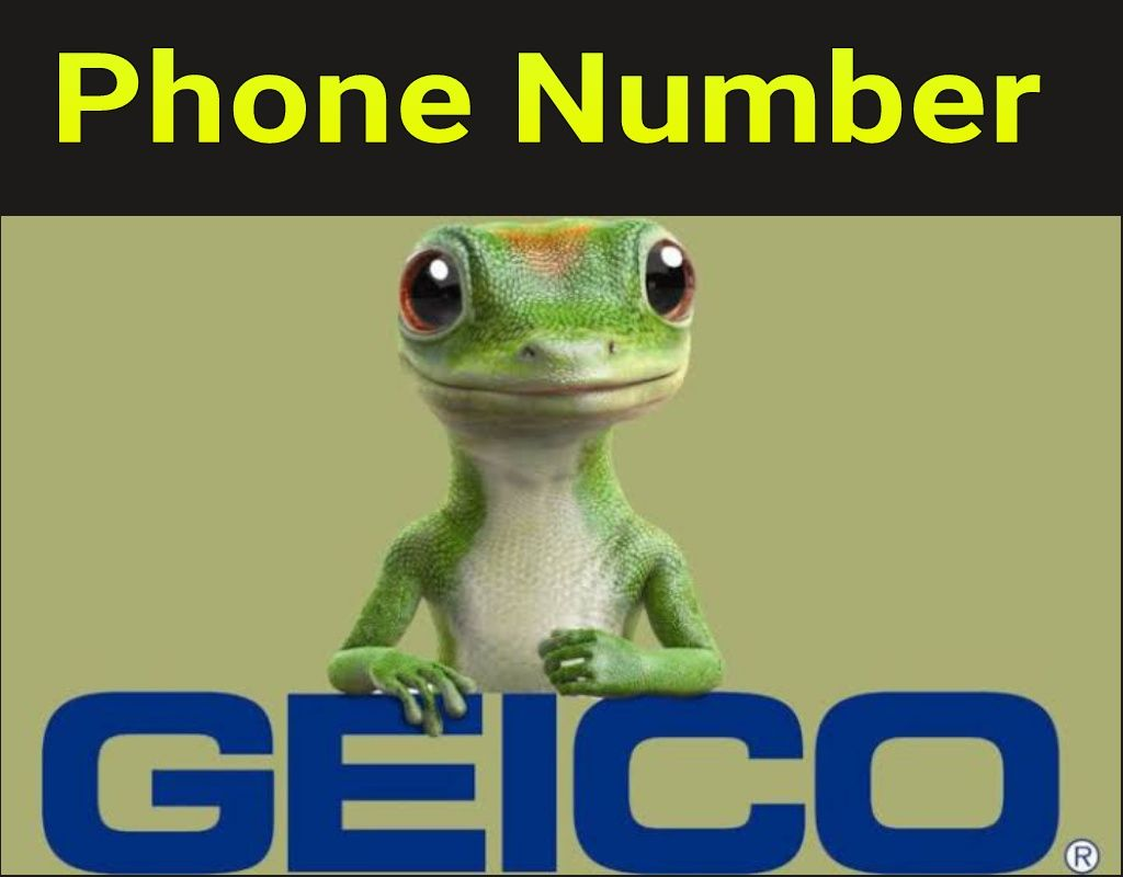 Geico Car Insurance Phone Number Call Now And Talk With Agents