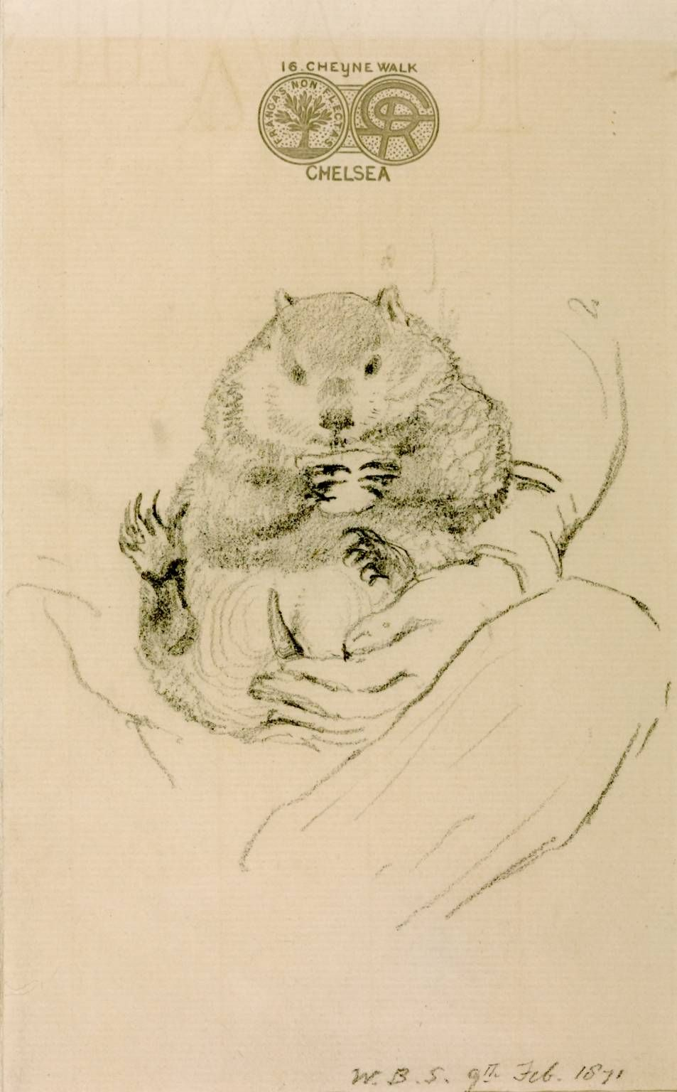 William Bell Scott, Rossetti's Wombat Seated in his Master's Lap, graphite on paper, 1871