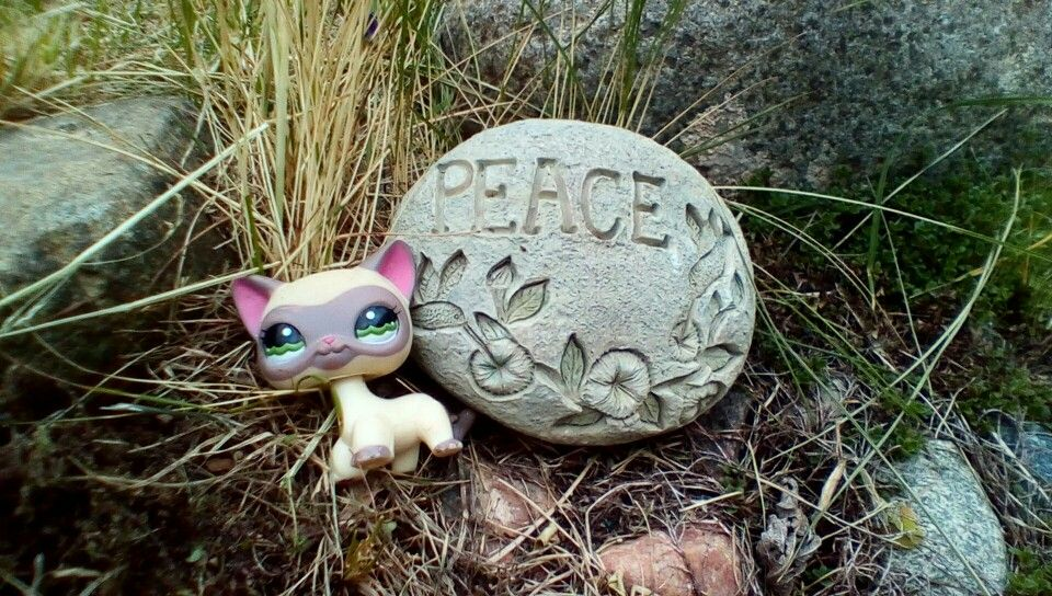Peace, lps picture!