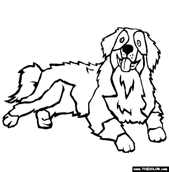 bernersennen hond honden bernese kleurplaten