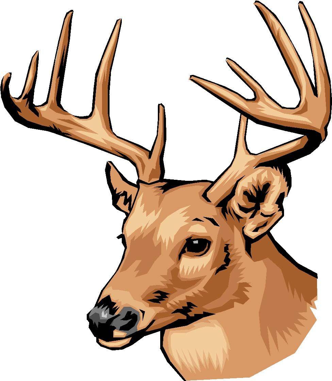 Deer decals with color deer head decal color wild for Deer mural decal