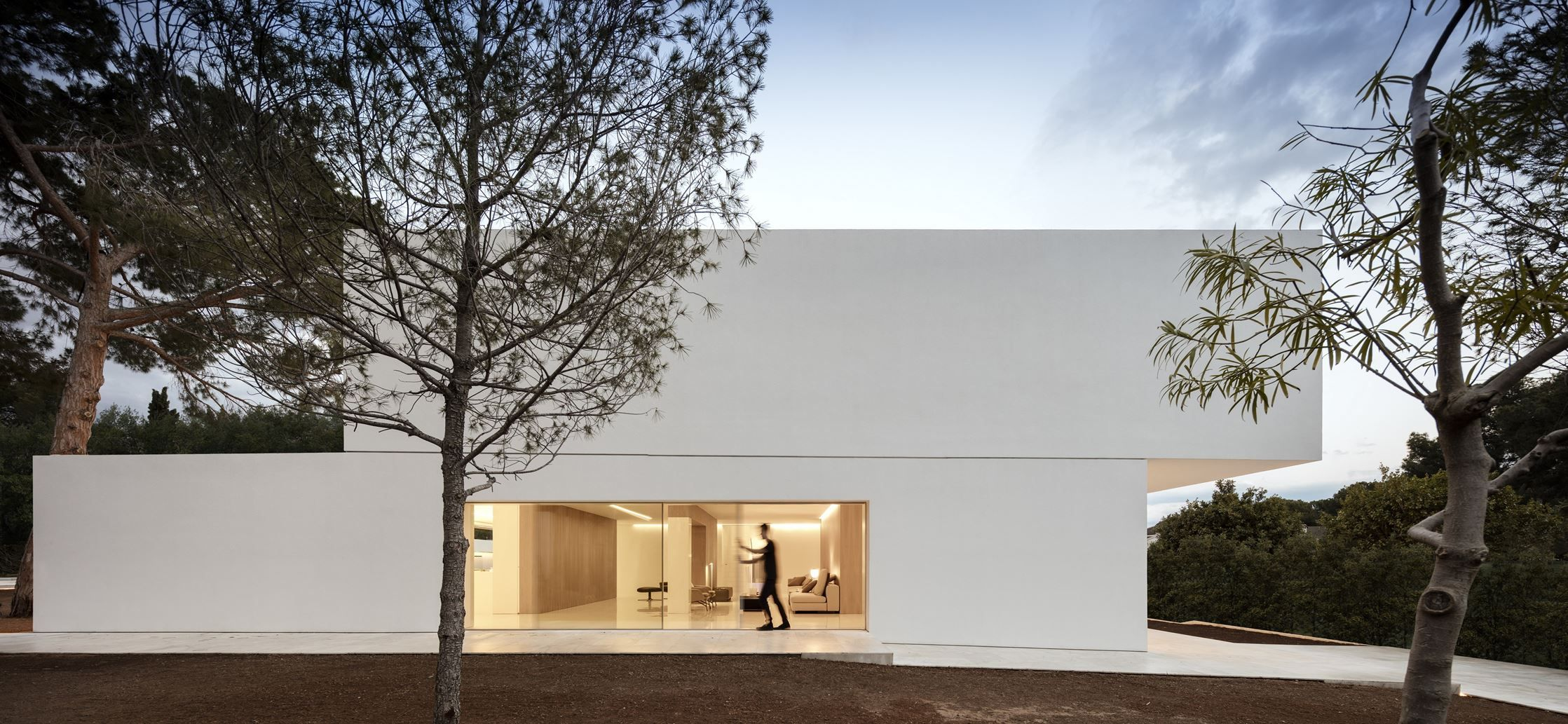 House Between The Pine Forest - Picture gallery | Modern Line ...