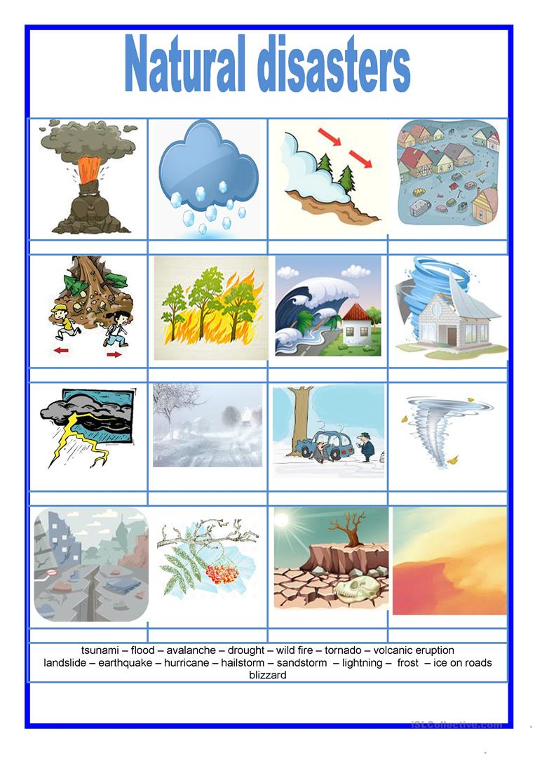 Picture Dictionary Natural Disasters English Esl Worksheets Natural Disasters Natural Disasters Art Picture Dictionary