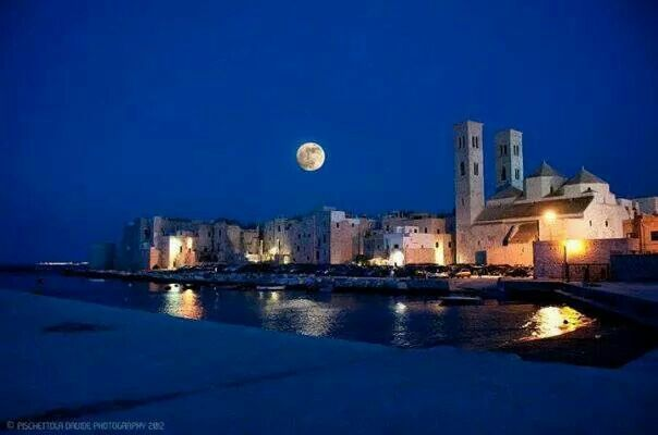 molfetta at night | Molfetta by night