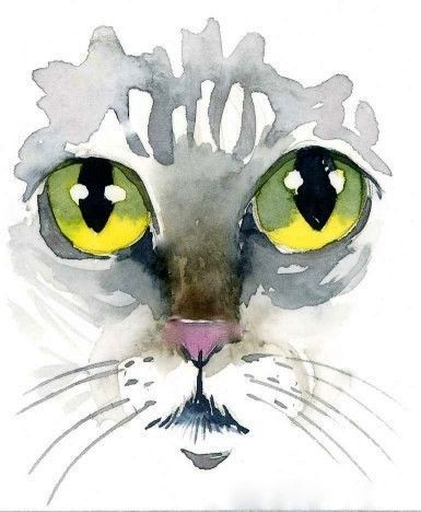 Cats Eyes Watercolor By Kim Attwooll Sanatsal Resimler Tuval