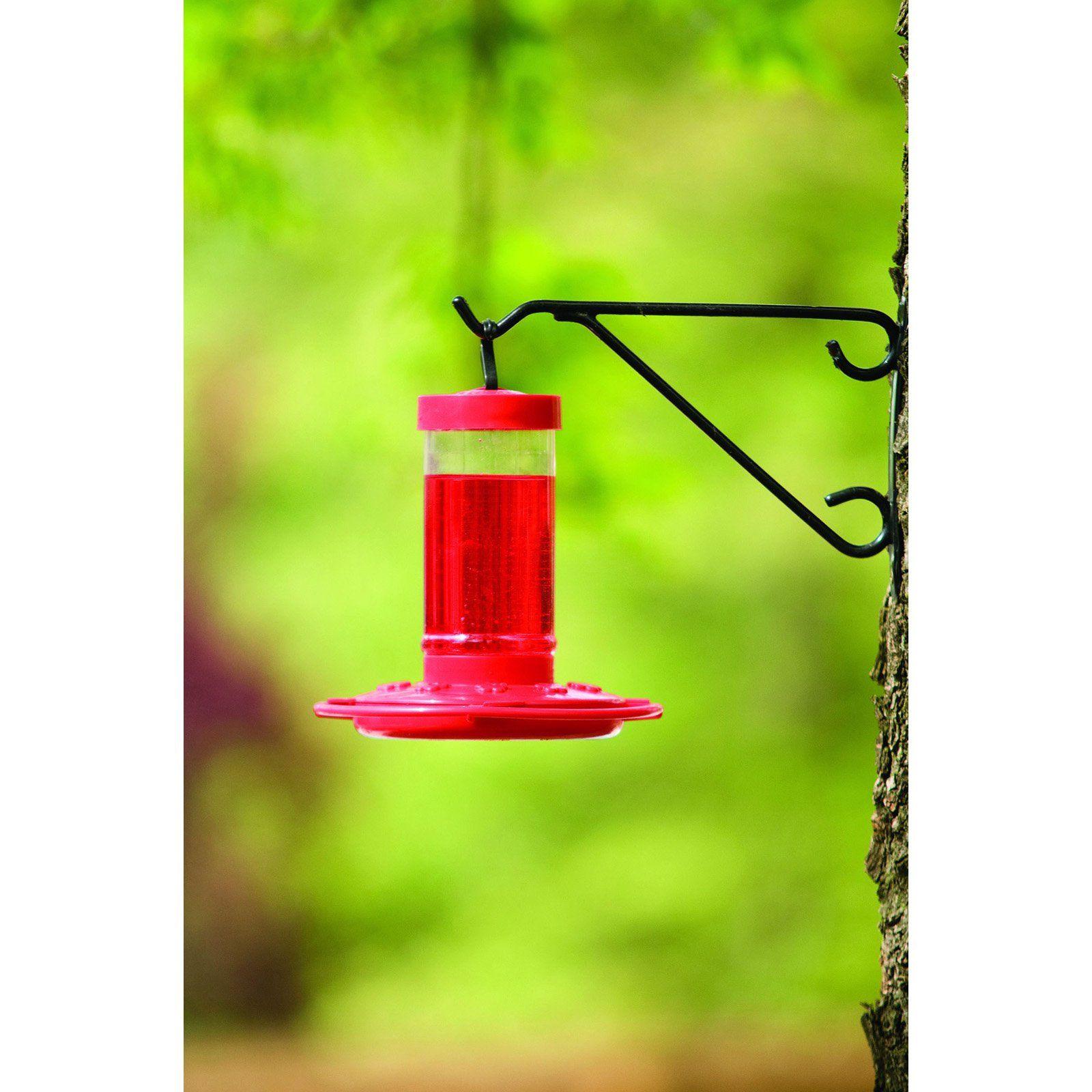 Patio & Garden in 2020 Humming bird feeders, Glass