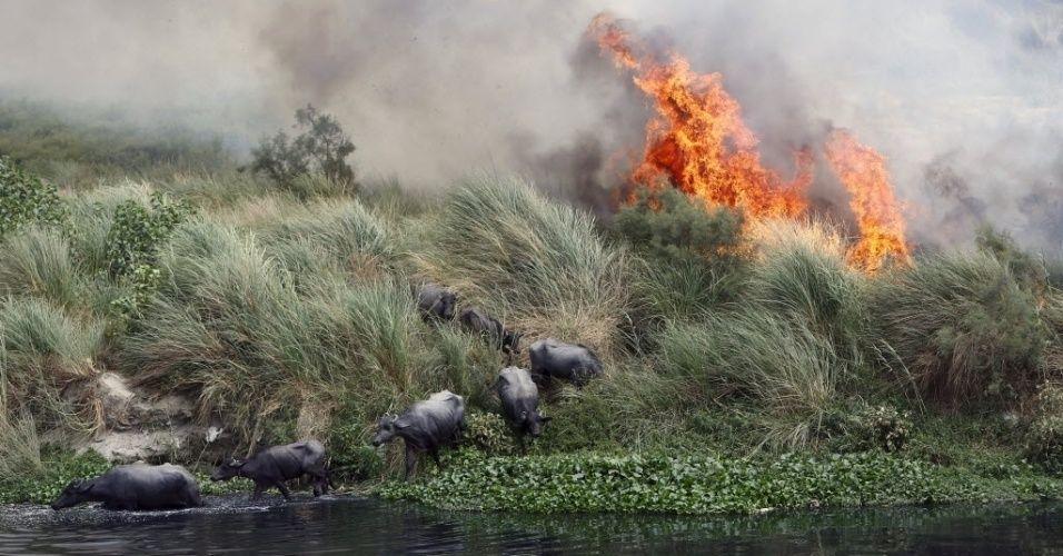 Desvendando 4 mitos de quem não acredita em mudanças climáticas