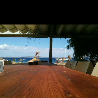 Palma...o el Caribe