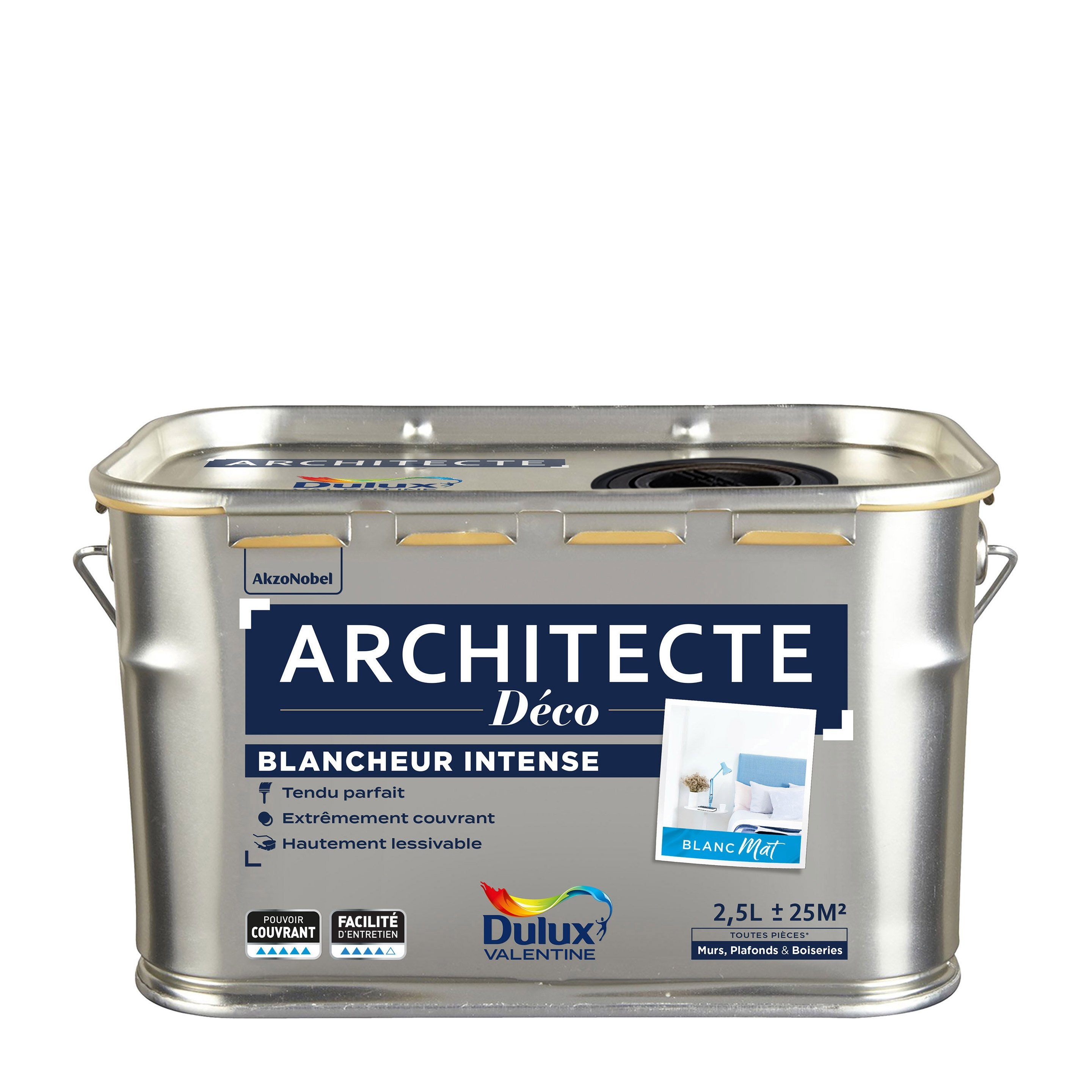 100 Incroyable Concepts Dulux Valentine Architecte Blanc Mat