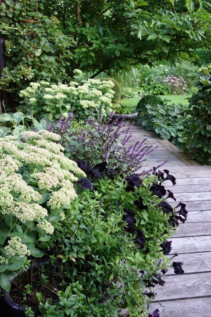 Photo of 30+ beautiful green and white garden for a calm atmosphere