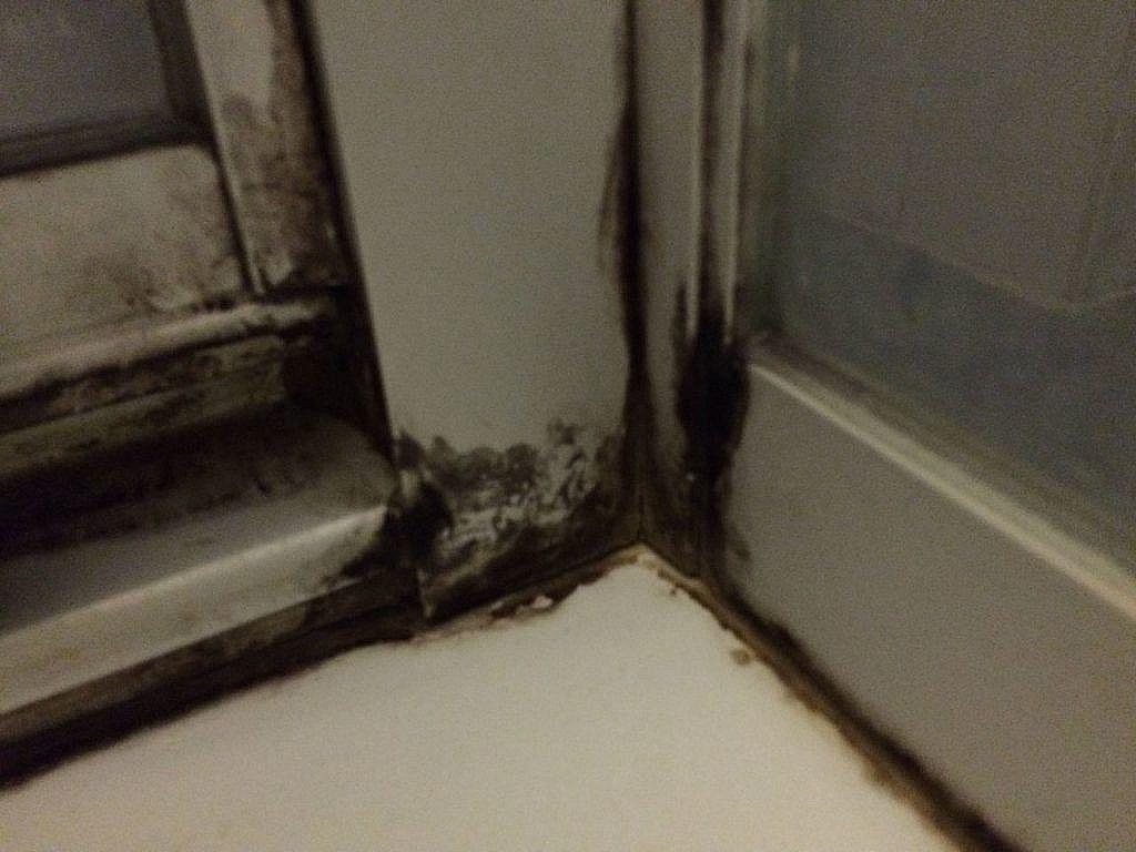 Dusche Reinigen Mit Hausmitteln Klappt Auch Bei Schimmel Duschkabine Reinigen Schimmel In Der Dusche Schimmel Entfernen