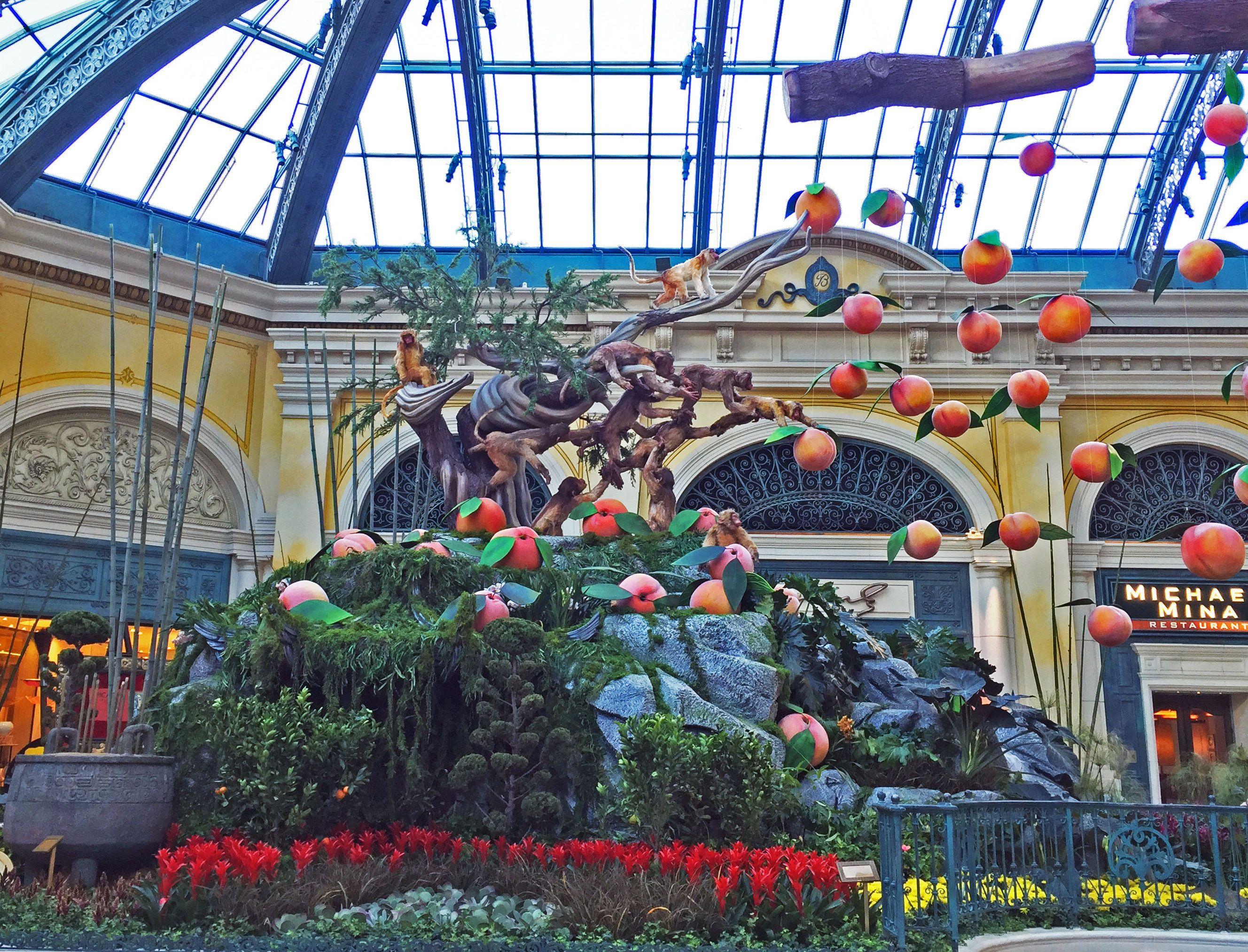 11560f7120fdb4a13a8a30c58e6b822a - Bellagio Conservatory & Botanical Gardens Las Vegas