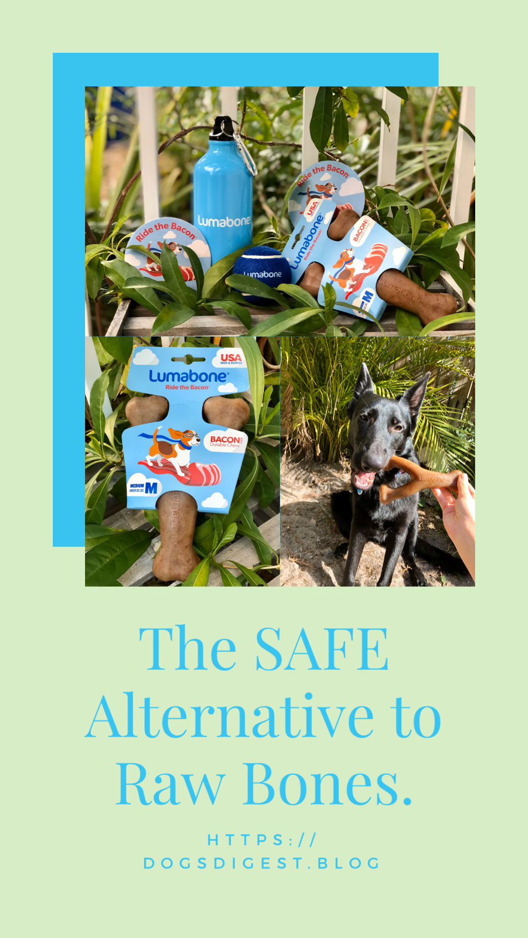 The Safe Alternative To Raw Bones With Images Safe